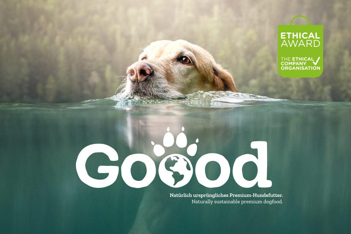 leckere snack-pakete: gut für hund und umwelt