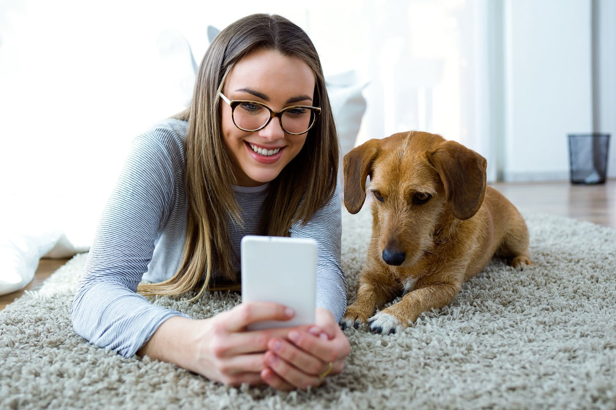 Die besten Apps für Hundebesitzer